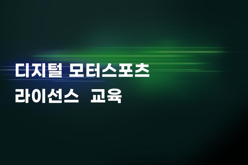 [DMS 디지털 모터스포츠 라이선스]